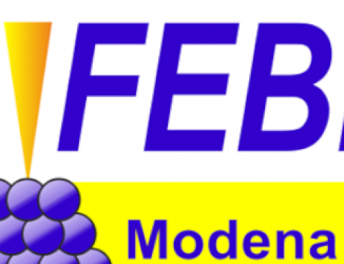 2018, July 10-13: 7th FEBIP in Modena, Italy