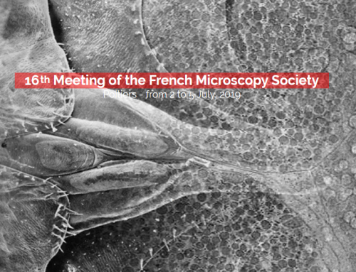 2019 July, 2-5: 16th Meeting of the French Microscopy Society