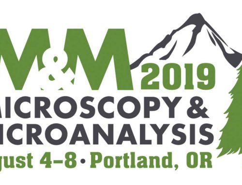 2019 August, 4-8: Microscopy and Microanalysis meeting in Portland